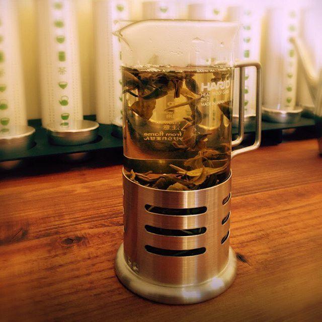 今日のtea福建省のジャスミン茶です。手作業で香り付けした香り高い花茶です。#ふくちゃ #jasmine #ジャスミン茶 #lovetea #tea